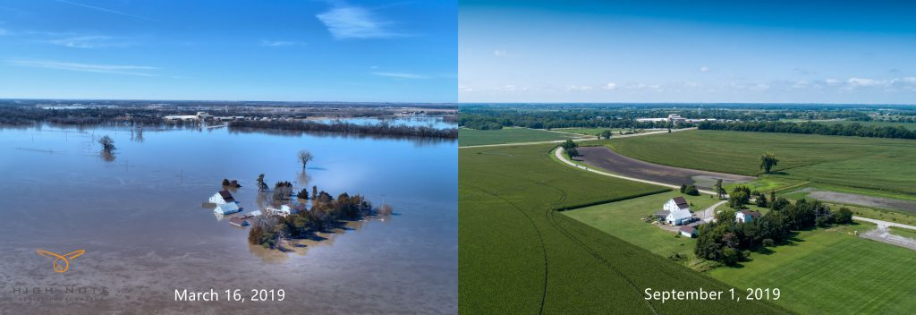 Flooded farmland recovers rapidly from hard work photo